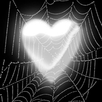 Heart in Cobwebs